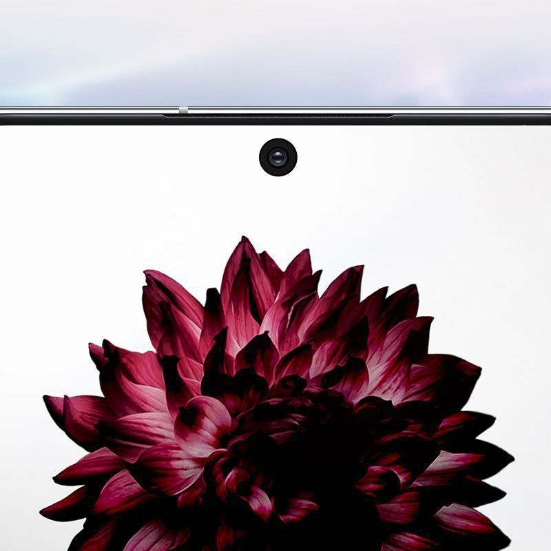 Close-up of Galaxy Note10 plus's cinematic Infinity-O Display with a flower onscreen